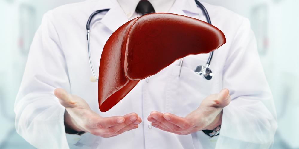 Doctor with stethoscope and liver on the  hands in a hospital